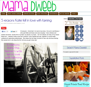 MamaDweeb Guest Post